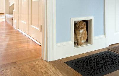 10 idées au poil pour créer un coin cosy pour votre chat