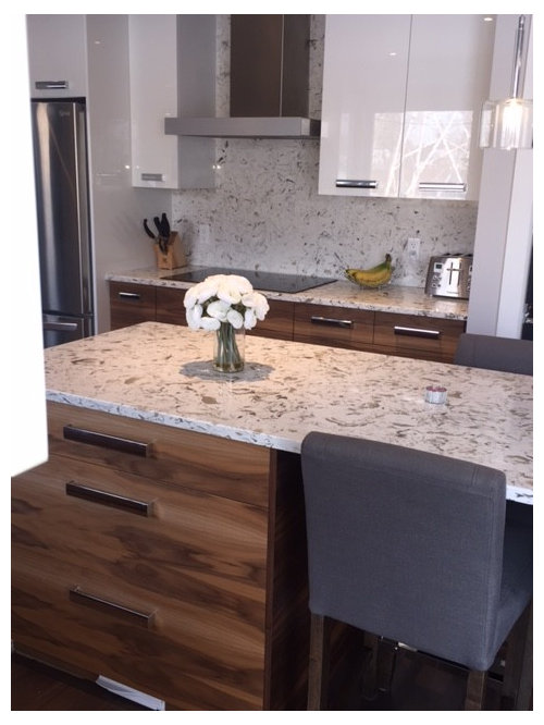 Our 11 Best Montreal Kitchen with Terrazzo Countertops Ideas ...