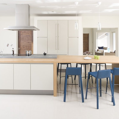 Example of a trendy kitchen design in Dublin