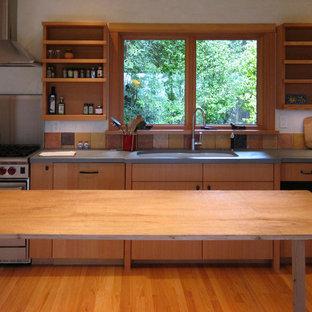 Ispirazione per una cucina design con elettrodomestici in acciaio inossidabile, lavello a doppia vasca, nessun'anta, ante in legno scuro e top in cemento