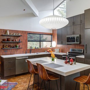 75 Most Popular Midcentury Modern Kitchen Design Ideas For 2019