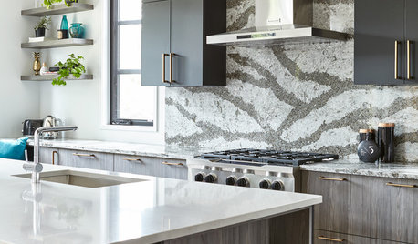Latest Kitchen Backsplash Trends   Kitchen Backsplashes On Houzz Tips From  The Experts