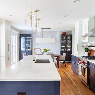 A Bold and Beautiful Blue Kitchen in Glen Ellyn