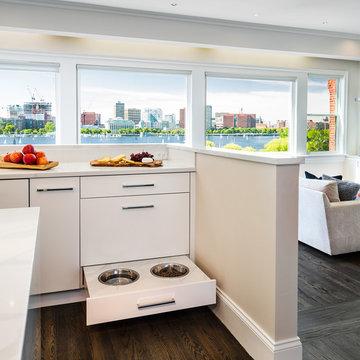 A Contemporary Flavor for Boston Penthouse