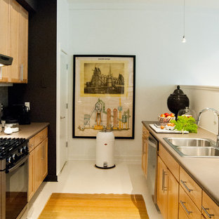 Example of a minimalist kitchen design in New York