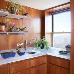 ニューヨークの小さいモダンスタイルのおしゃれなキッチン (アンダーカウンターシンク、フラットパネル扉のキャビネット、中間色木目調キャビネット、ガラスカウンター、アイランドなし) の写真