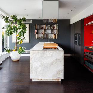 Imagen de cocina actual, grande, con armarios con paneles lisos, encimera de piedra caliza, suelo de madera oscura, una isla, puertas de armario grises y electrodomésticos con paneles