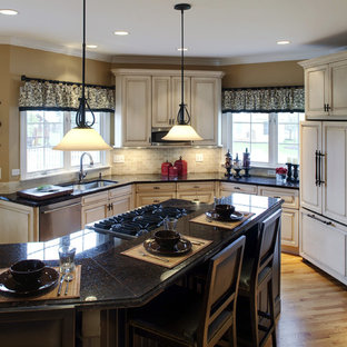 Traditional kitchen appliance - Example of a classic kitchen design in Chicago