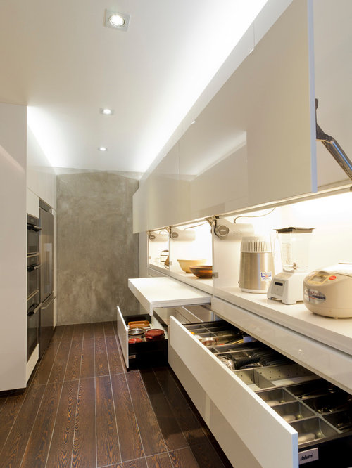 Contemporary Kitchen Designs   Trendy Galley Kitchen Photo In Singapore  With Flat Panel Cabinets And