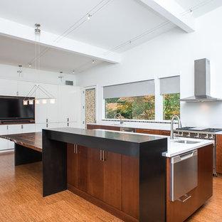デトロイトの広いアジアンスタイルのおしゃれなキッチン (ダブルシンク、フラットパネル扉のキャビネット、中間色木目調キャビネット、珪岩カウンター、白いキッチンパネル、石スラブのキッチンパネル、シルバーの調理設備、コルクフローリング) の写真