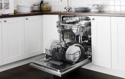 Should I Buy a Dishwasher?