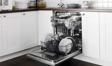 Should I Buy a Dishwasher?