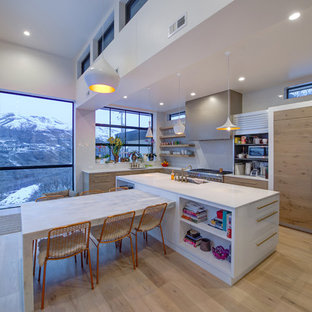 Contemporary kitchen pictures - Kitchen - contemporary light wood floor and beige floor kitchen idea in Salt Lake City with flat-panel cabinets, light wood cabinets, gray backsplash, paneled appliances and an island