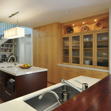 Contemporary Kitchen by Ana Williamson Architect