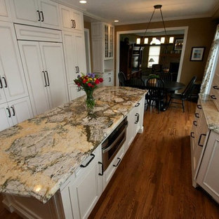 Inspiration For A Mid Sized Galley Dark Wood Floor Enclosed Kitchen Remodel  In Cleveland With