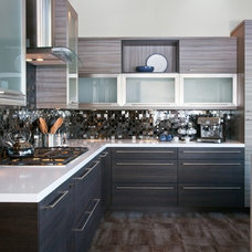 Modern Kitchen Cabinets by Green Depot