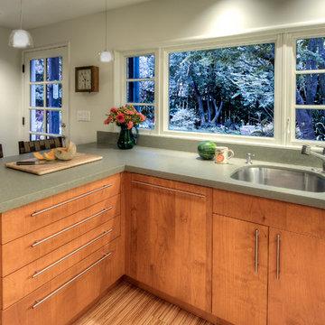 Berkeley Pied a Terre Kitchen Renovation