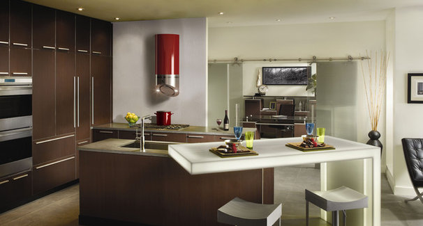 Contemporary Kitchen by BEST Range Hoods