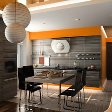 Contemporary Kitchen by BEST Range Hoods