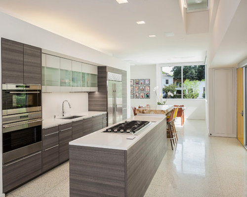 Gray wood cabinets houzz for Grey wood kitchen cabinets