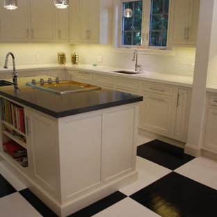 Paintable Kitchen Cabinets Houzz