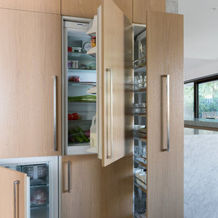 Imagen de cocina minimalista con electrodomésticos con paneles
