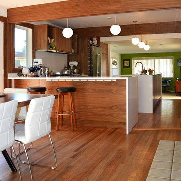 Blue Ridge Mid Century Kitchen