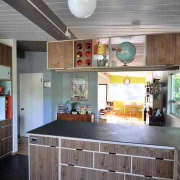 Blue Ridge Mid Century Modern Kitchen