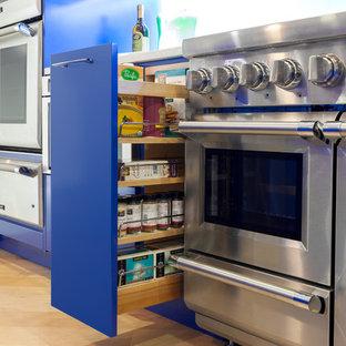 Bold Blue Contemporary Kitchen