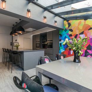 Imagen de cocina comedor de galera, actual, de tamaño medio, con armarios con paneles lisos, puertas de armario grises, una isla, suelo gris, electrodomésticos de acero inoxidable y suelo de madera clara