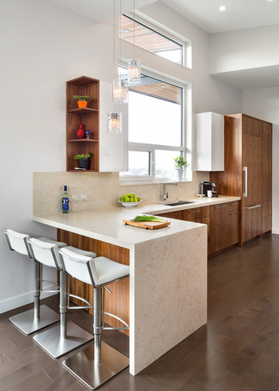 Contemporary Kitchen by Troico