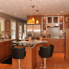 Contemporary Kitchen by Homestead Kitchens