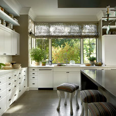 Transitional Kitchen by PROjECT interiors + Aimee Wertepny