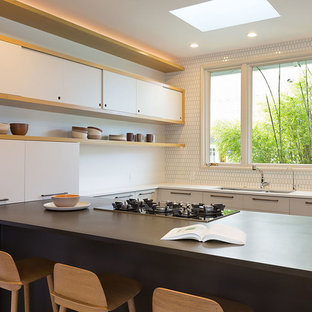 Mid Sized Midcentury Modern Open Concept Kitchen Pictures