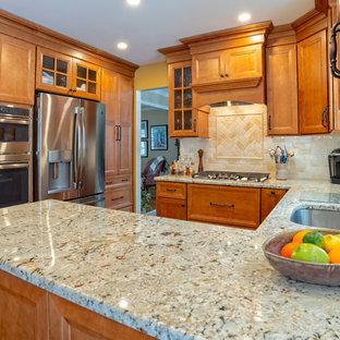 フィラデルフィアの中くらいのトラディショナルスタイルのおしゃれなキッチン (アンダーカウンターシンク、落し込みパネル扉のキャビネット、淡色木目調キャビネット、珪岩カウンター、マルチカラーのキッチンパネル、ガラスまたは窓のキッチンパネル、シルバーの調理設備、無垢フローリング、茶色い床、ベージュのキッチンカウンター) の写真