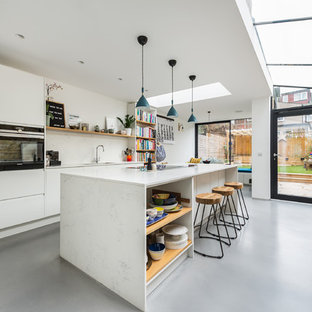 Design Ideas For A Medium Sized Contemporary Galley Kitchen Diner In London With Flat