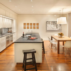 Contemporary Kitchen by Philip Babb Architect