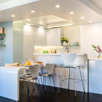 Brooklyn Contemporary Corian Kitchen