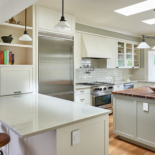 Peachy Glass Front Kitchen Cabinets Houzz Home Interior And Landscaping Ologienasavecom