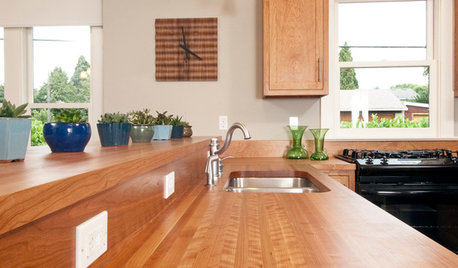 Wonderful Wood Countertops for Kitchen and Bath