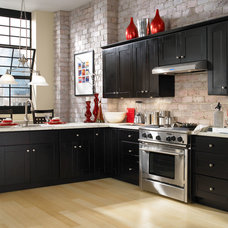 Contemporary Kitchen by Cabinets To Go