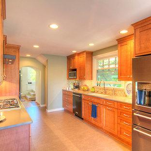 シアトルの中サイズのラスティックスタイルのおしゃれなキッチン (アンダーカウンターシンク、シェーカースタイル扉のキャビネット、中間色木目調キャビネット、クオーツストーンカウンター、マルチカラーのキッチンパネル、モザイクタイルのキッチンパネル、シルバーの調理設備の、リノリウムの床、アイランドなし) の写真
