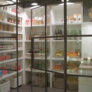 Foto de cocina minimalista, de tamaño medio, con despensa