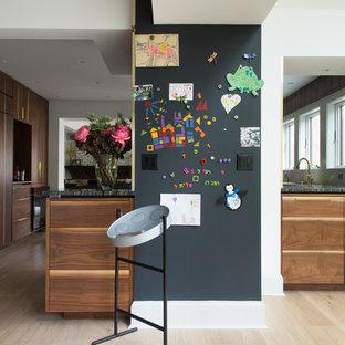 ニューヨークの中サイズのモダンスタイルのおしゃれなキッチン (アンダーカウンターシンク、フラットパネル扉のキャビネット、中間色木目調キャビネット、マルチカラーのキッチンパネル、テラコッタタイルのキッチンパネル、黒い調理設備、淡色無垢フローリング、オニキスカウンター、マルチカラーのキッチンカウンター) の写真