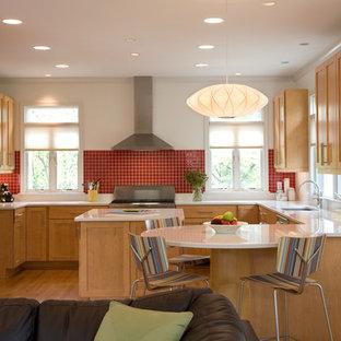 ワシントンD.C.のトランジショナルスタイルのおしゃれなキッチン (シェーカースタイル扉のキャビネット、シルバーの調理設備の、中間色木目調キャビネット、赤いキッチンパネル) の写真