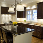 Dc Row Home Kitchen Fridge Traditional Kitchen Other Metro By Synergy Design