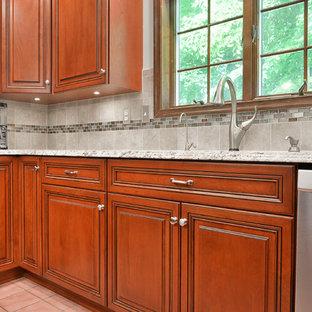 ワシントンD.C.の中サイズのトランジショナルスタイルのおしゃれなキッチン (アンダーカウンターシンク、レイズドパネル扉のキャビネット、中間色木目調キャビネット、御影石カウンター、グレーのキッチンパネル、セラミックタイルのキッチンパネル、シルバーの調理設備の、セラミックタイルの床、ピンクの床、グレーのキッチンカウンター) の写真