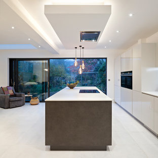 ロンドンの中くらいのエクレクティックスタイルのおしゃれなキッチン (一体型シンク、フラットパネル扉のキャビネット、グレーのキャビネット、珪岩カウンター、グレーのキッチンパネル、石スラブのキッチンパネル、黒い調理設備、磁器タイルの床、グレーの床、グレーのキッチンカウンター) の写真