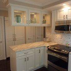 Transitional Kitchen by Cupboards Chicago Design Group