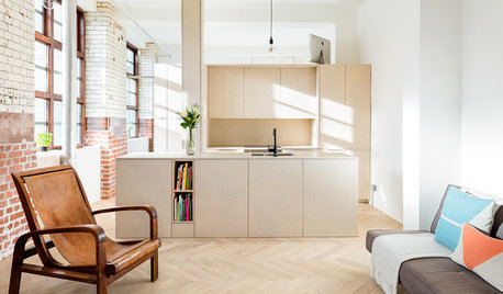 8 Ways to Use Plywood for Storage